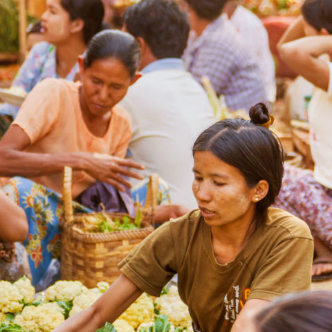 A Case Study in Interoperable Payments in Myanmar's Microfinance Industry Part 2: Standardizing Digital Loan Repayments